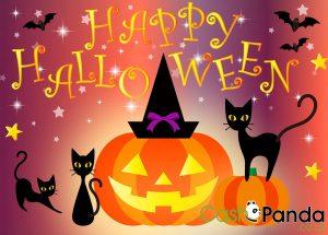 CashPanda cash loans online Halloween