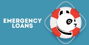 The CashPanda Guide for emergency
